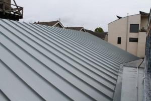 Blue-Gray Rheinzinc Standing Seam Roof and Cricket